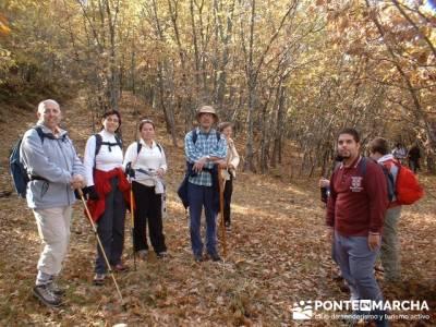 Monte La Umbría - Excursiones desde Madrid; senderismo en madrid